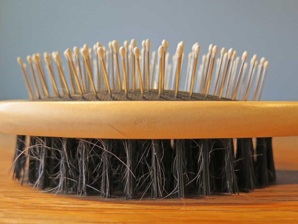 cepillo de cerdas de jabalí